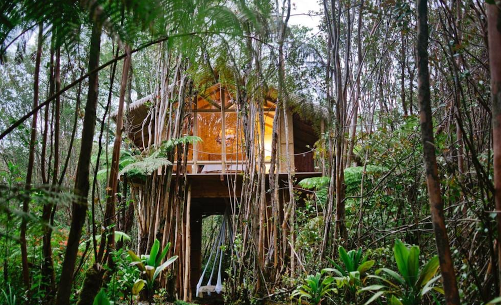 Hawaii tree house airbnb